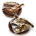 OFERTA Pack degustación: Cordero + Cochinillo